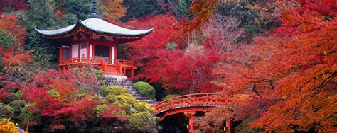imagenes de korea japon 10 motivos para adorar jap 243 n davekun