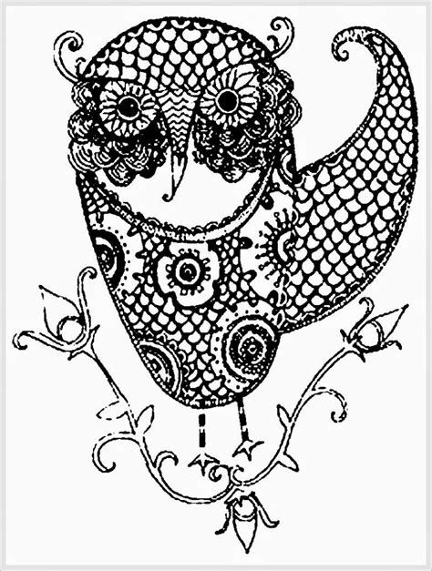 coloring pages adults owl owl adult free printable coloring pages realistic