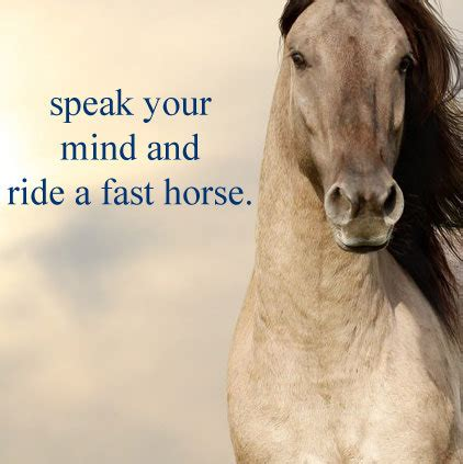 horse images  whatsapp dp profile  quotes slogan