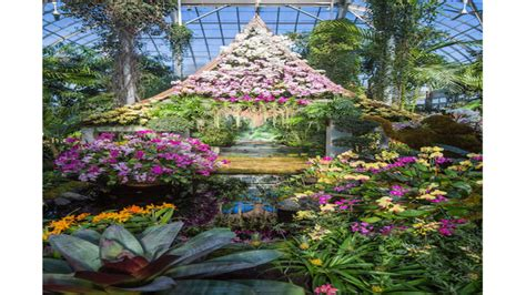 New York Botanical Garden Press Enter A World Of Spectacular Color The Magnificent Orchid Thailand Show At The New York