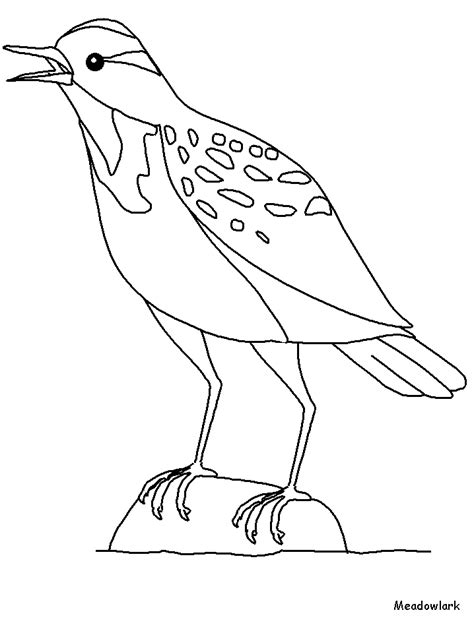 Western Meadow Lark Colouring Pages Az Coloring Pages Meadow Coloring Page