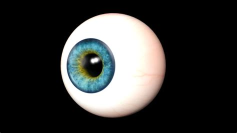 realistic eye realistic eye from 3d realistic collection by s i s c o 3docean