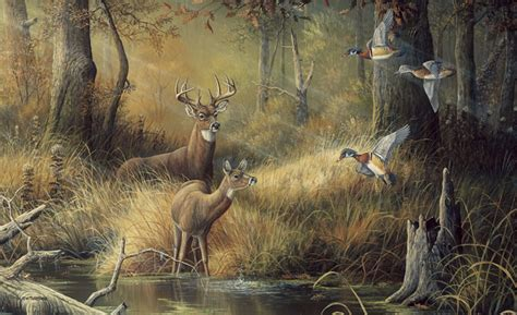 forest outdoor nature wildlife wall murals decor place