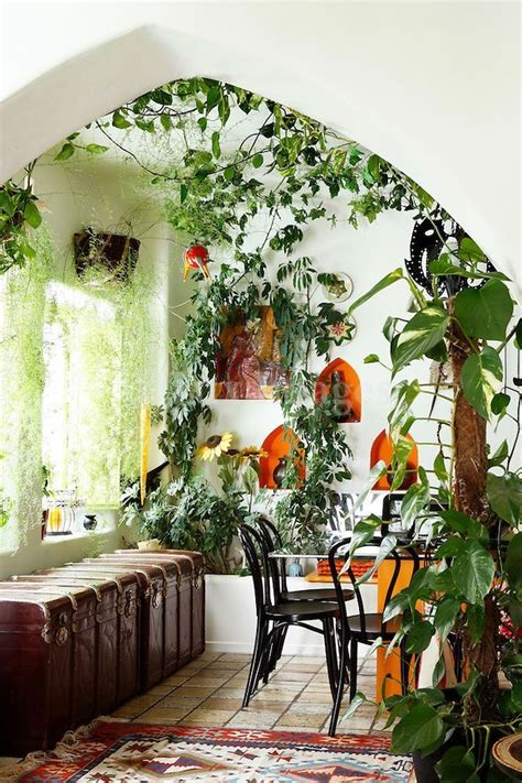 Bedroom Tree Plants 25 Best Ideas About Jungle Room On Jungle