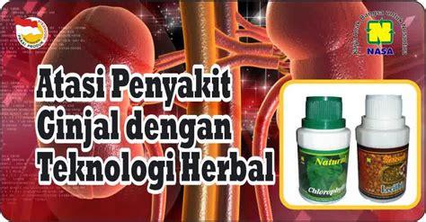 Obat Maag Herbal Nasa artikel kesehatan pupukorganiknasapusat