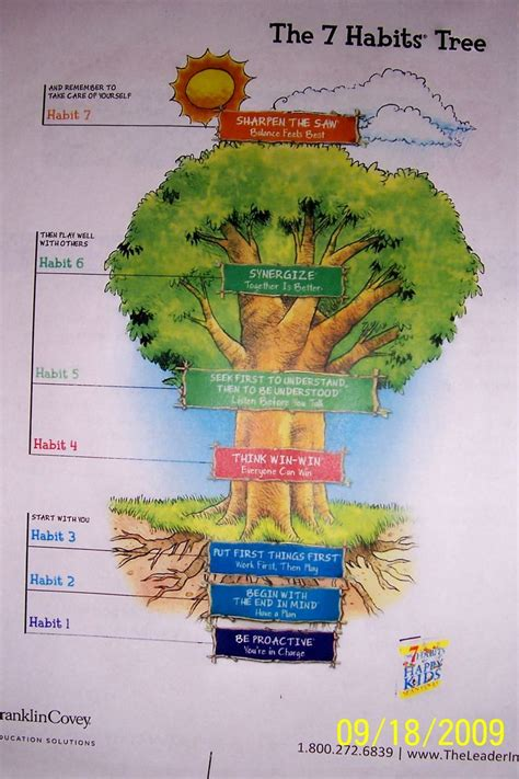 the 7 habits of the 7 habits tree classroom ideas