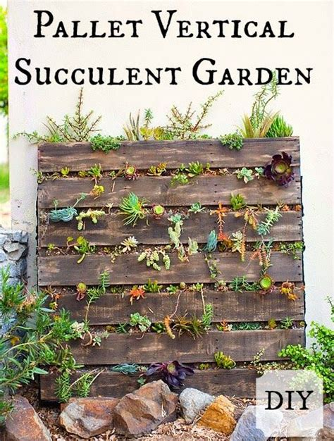 best 25 vertical succulent gardens ideas on