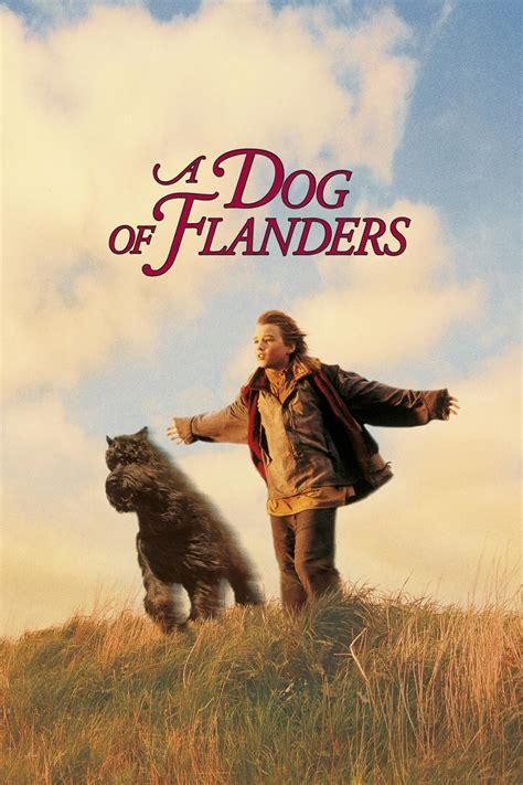 nedlasting filmer dog days gratis vedeti a dog of flanders online filme noi gratis a dog of
