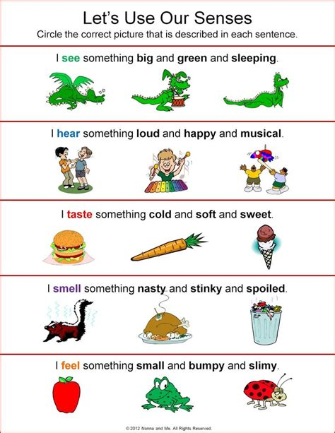 kindergarten activities senses 81 best 5 senses images on pinterest day care
