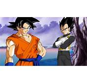 Son Goku And Vegeta Dragon Ball Supe Wallpaper 5669