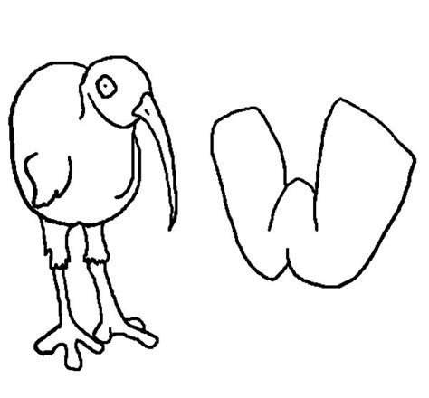 kiwi bird coloring pages