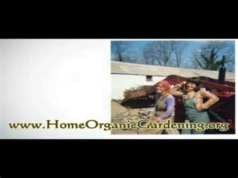 how to start an organic garden in your backyard learn how to start organic vegetable in your home garden