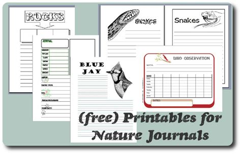 free printable educational journal articles read her quot the minimalist guide to nature notebooking