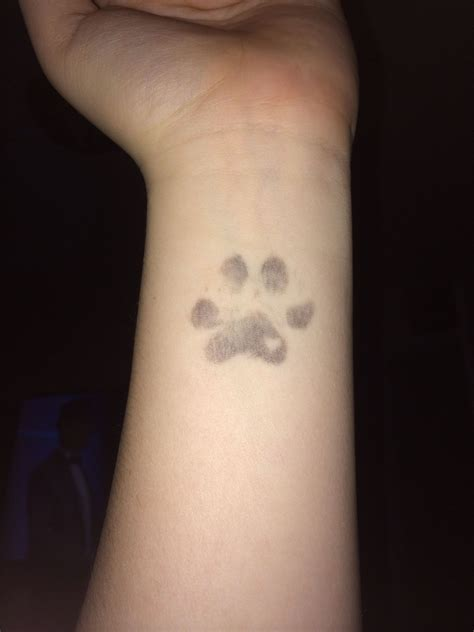 dog footprint tattoo my most recent my dogs actual paw print my