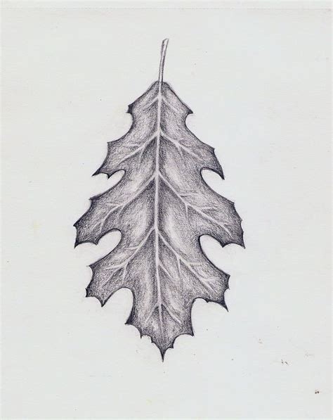 leaf tattoo design 17 best ideas about oak leaf tattoos on fall