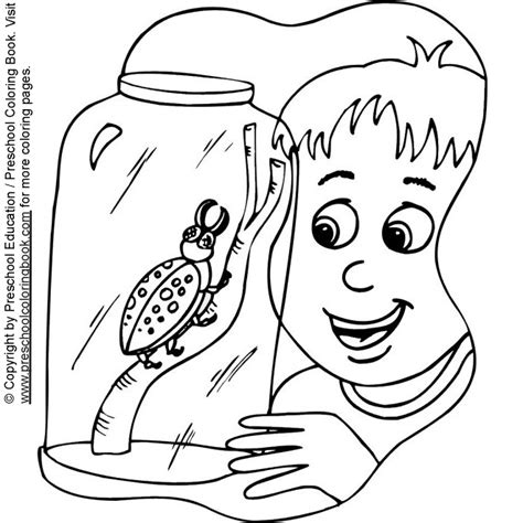 coloring 2 renew books www preschoolcoloringbook bug coloring page