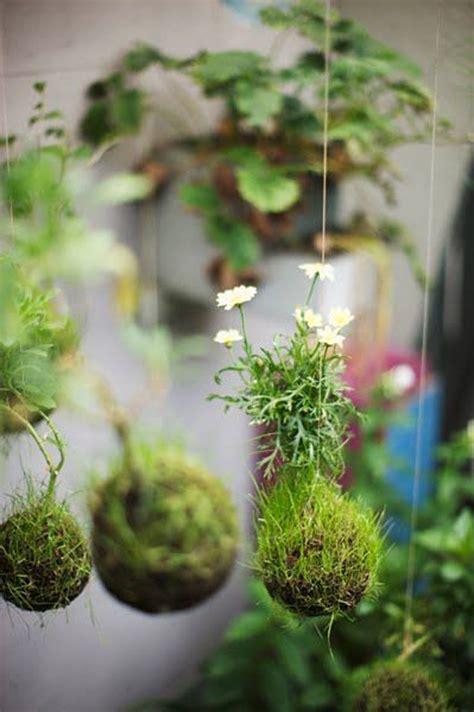 beautiful kokedama string garden ideas homemydesign