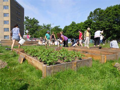 community gardening halifax garden network