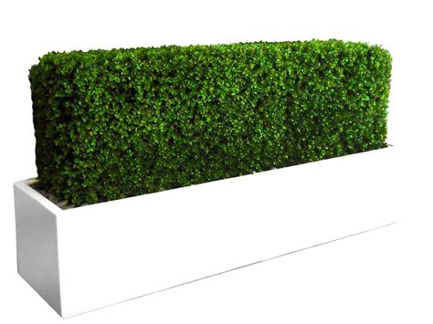 narbonne rectangular planter box plantersetc