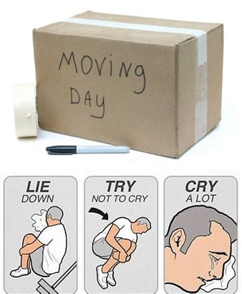 Moving Day Meme - pin by u haul co on moving day humor pinterest