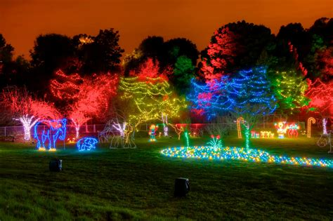 Oakland Zoo Lights Zoolights At Oakland Zoo Tickets Fri Dec 5 2014 At 5 30