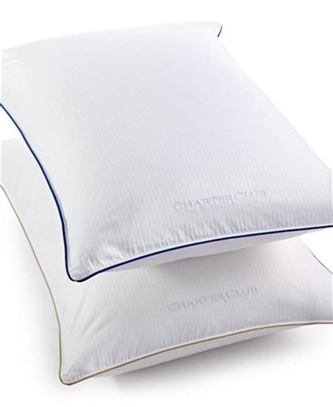 macys bed pillows closeout charter club vail elite medium firm density