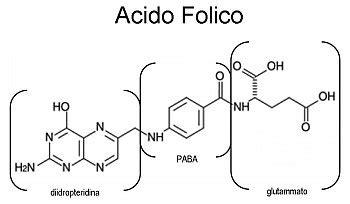 in quali alimenti si trova l acido folico acido folico