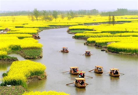 5 Sq Feet by Landscape Flowers Nature Travel Spring China Science