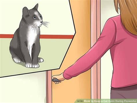 how to calm a during fireworks how to keep a cat calm during fireworks 11 steps with pictures