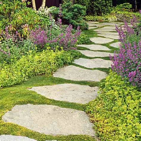 best backyard ideas for landscaping oh creative
