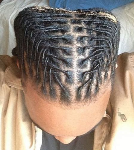 hairstyles for dreads 58 black men dreadlocks hairstyles pictures
