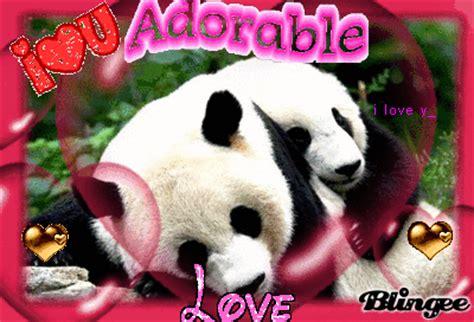 imagenes de ositos navideños osos panda fotograf 237 a 76688375 blingee com