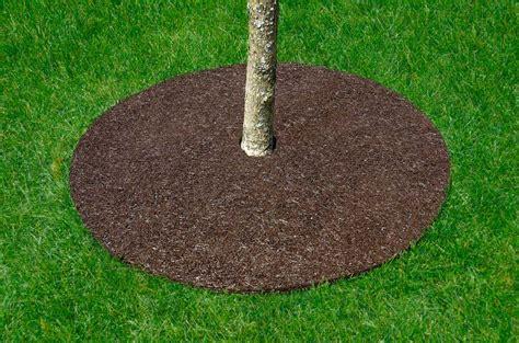 Good Where To Buy Indoor Outdoor Carpet #9: Treering-action1-lg.jpg