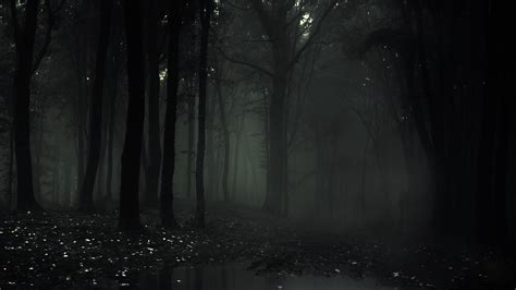 black station ambient creepy horror slenderman the arrival forest eight pages wallpaper
