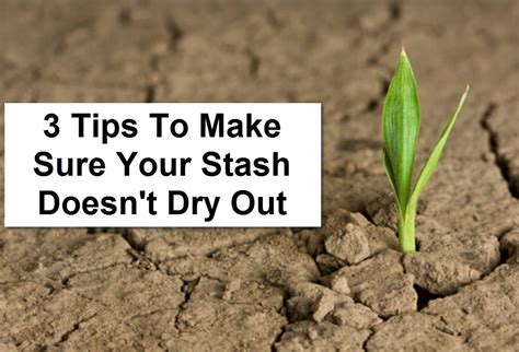 3 tips to make sure your weed stays fresh and not dry