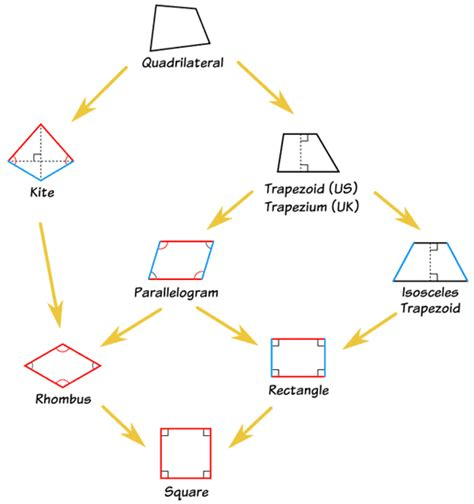 diagram of quadrilaterals math grade 5