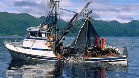 commercial fishing boat jobs uk cleaner fuels for fishing boats could backfire on the