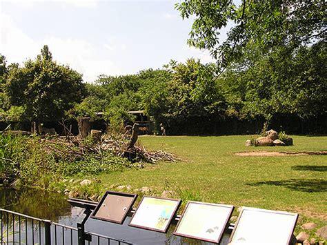 garten magdeburg savanna