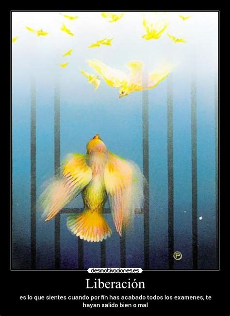 liberacion sobrenatural libertad para liberaci 243 n desmotivaciones