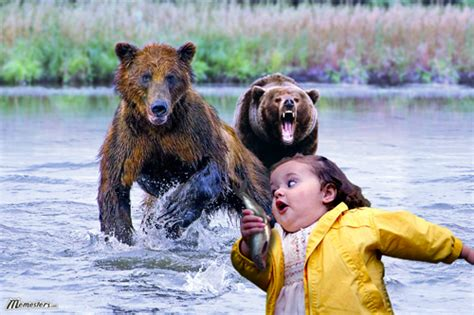 Running Bear Meme - the most amazing funny bear pictures 24 pics