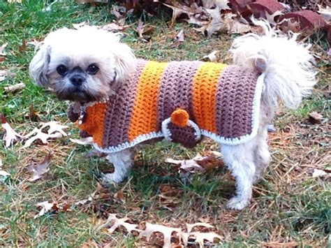 free crochet pattern for a dog coat crochet dog sweater patterns you your pup will love