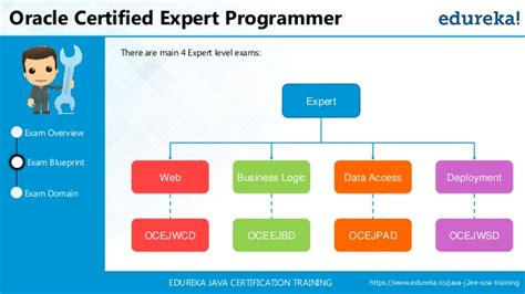 oracle tutorial for experts java certification tutorial java tutorial for beginners