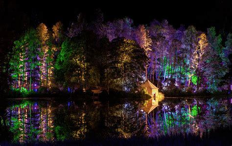 imagenes para pc naturaleza fondos de pantalla parque bosques 225 rboles noche naturaleza