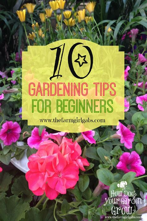 How To Start A Flower Garden For Beginners 10 Gardening Tips For Beginners The Farm Gabs 174