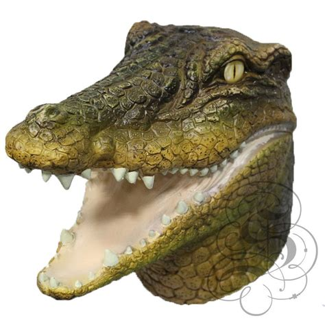 Reptile L by Animal Predatory Aquatic Reptile Crocodile Alligator