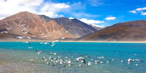 Majestic Leh Ladakh with Pangong Lake Tour Package, Budget