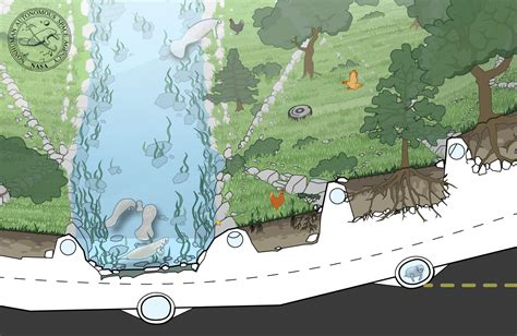river cross section the lazy river cross section detail the nonhuman