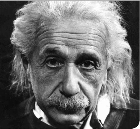 dr albert einstein biography wit and humour of dr einstein s driver two geniuses