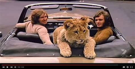 film a lion called christian christian the lion een prachtig verhaal