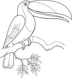 angry birds kolorowanka dla dzieci pictures pin